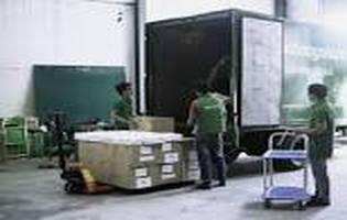Nhân viên lái xe và phụ xe tải giao hàng làm hành chính